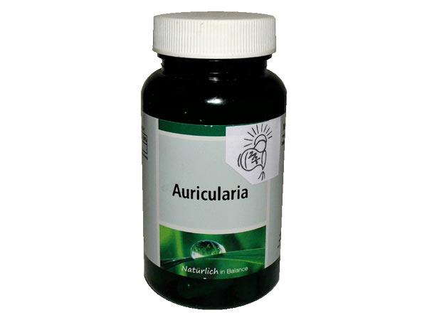 Vitalpilze Auricularia zur Durchblutungsförderung